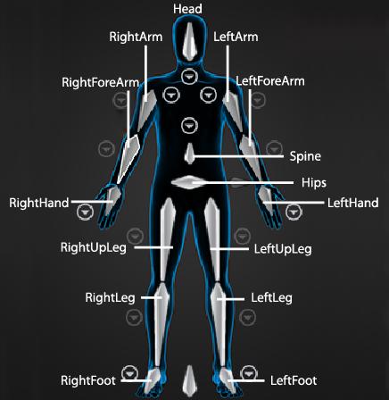 maya help: humanik character structure, Skeleton